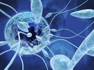 что такое нормозооспермия у мужчин